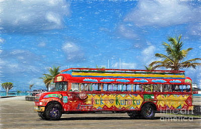 Photograph - Party Time In Aruba by Sue Melvin