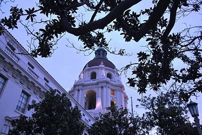 Photograph - Pasadena City Hall Moody Trees by Matt Harang