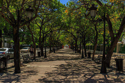 Photograph - Paseo De La Princesa by Jose Oquendo
