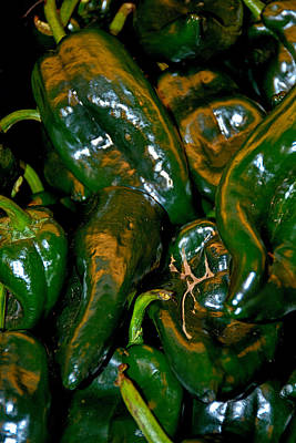 Photograph - Pasilla Chiles by Robert Meyers-Lussier