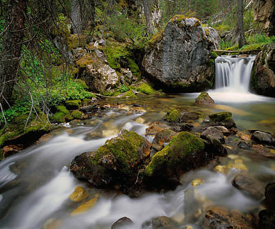 Lost River Mountains Photograph - Pass Creek by Leland D Howard
