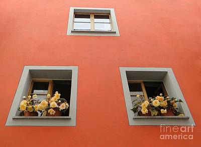 Photograph - Passau Window Boxes by Barbie Corbett-Newmin