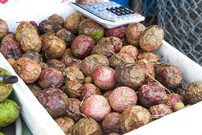 Passiflora Edulis Photograph - Passiflora Edulis Passion Fruits by D R