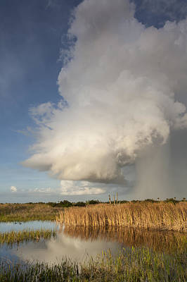 Photograph - Passing Late Afternoon Rain Shower by David Watkins