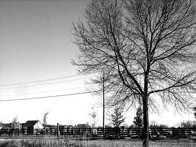 Columbus Ohio Photograph - Passing Through by Daphne Duddleston