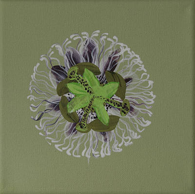 Passionflower Painting - Passion Fruit Flower  by Deborah Christensen