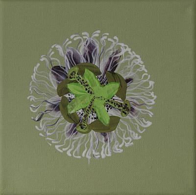 Passion Fruit Flower  Art Print