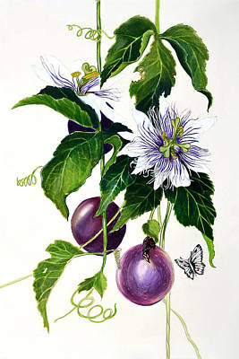 Passion Fruit Art Print by Lorraine Romaior