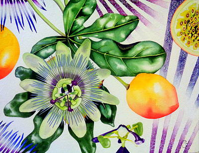 Passion Fruit Painting - Passion In The Tropics by Margaret Elizabeth Johnston ND