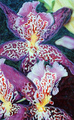 Mixed Media - Passion Orchids by Banning Lary
