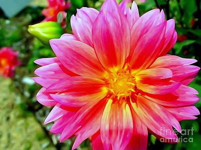 Digital Art - Passion Petals by Ed Weidman