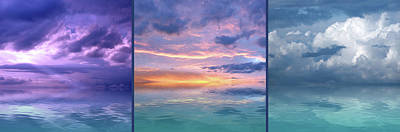 Photograph - Passionate Nights And Wild Days Panoramic by Gill Billington