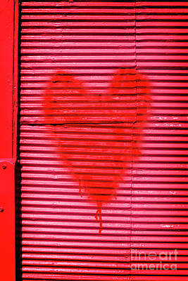 Love Photograph - Passionate Red Heart For A Valentine Love by Jorgo Photography - Wall Art Gallery