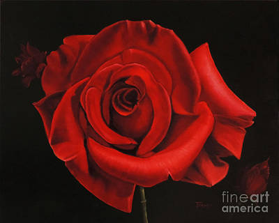 Painting - Passionate Rose by Jimmie Bartlett