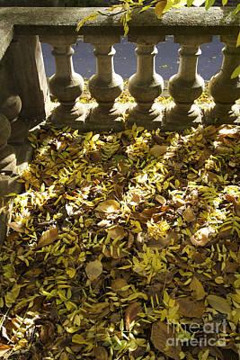 Fallen Leaf Photograph - Past Balustrade. by Bernard Jaubert