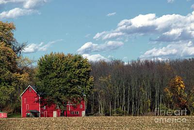 Photograph - Past Harvest by Nicki McManus