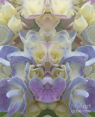Photograph - Pastel Blooms by Christina Verdgeline