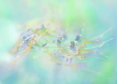 Pastel Botany Art Print by Tianxin Zheng
