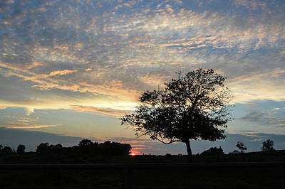 Photograph - Pastel Clouds At Sunset by Tana Reiff