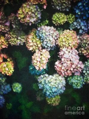 Floral Arrangement Digital Art - Pastel Colored Hydrangeas by Amy Cicconi