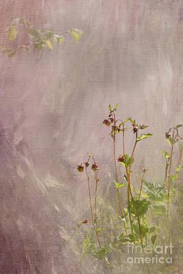 Digital Art - Pastel Dreams by Liz Alderdice