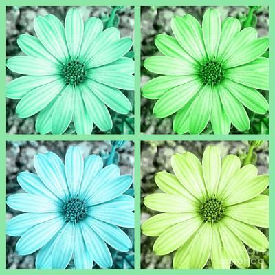 Photograph - Pastel Floral Collage by Rachel Hannah