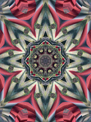 Digital Art - Pastel Fractal by Ted Raynor