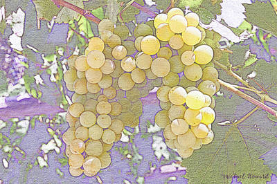 Pastel Grapes Art Print by MikeHoward Photography