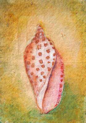 Shell Pastel Painting - Pastel Junonia Volute Shell by Phyllis OShields