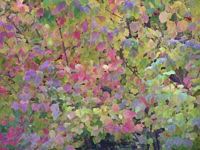 Photograph - Pastel Leaves by Oleg Zavarzin