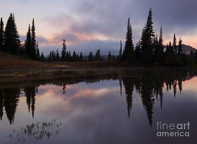 Mt. Rainier Photograph - Pastel Majesty Revealed by Mike Dawson