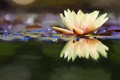Photograph - Pastel Water Lily  by Carol Montoya