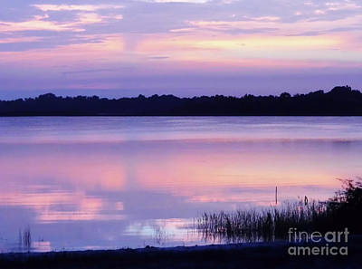 Photograph - Pastel Morning by D Hackett