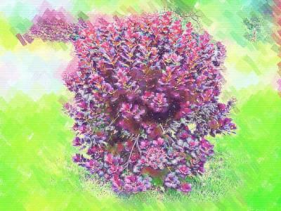 Digital Art - Pastel Painted Red Bush by Skyler Tipton