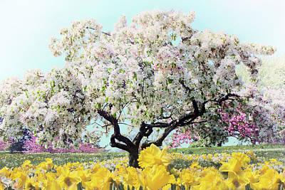 Pastel Park Art Print by Jessica Jenney