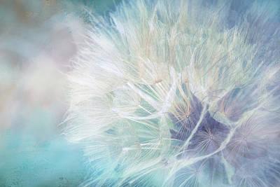 Dandelion Digital Art - Pastel Party by Terry Davis