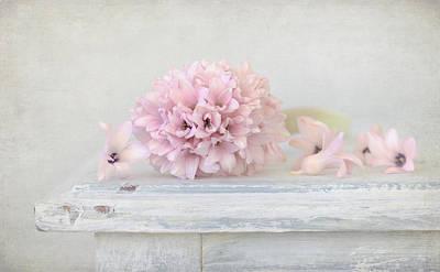 Photograph - Pastel Pink Hyacinth by Kim Hojnacki