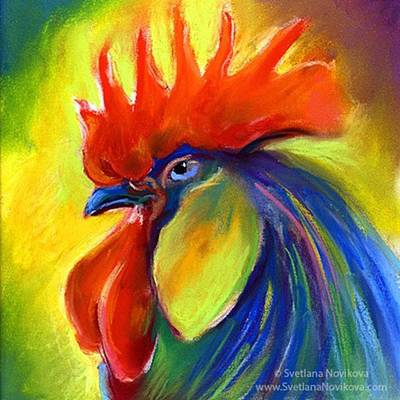 Colorful Wall Art - Photograph - Pastel Rooster By Svetlana Novikova ( by Svetlana Novikova