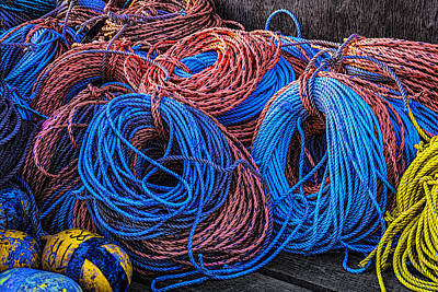 Photograph - Pastel Ropes by Marty Saccone