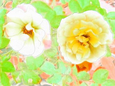 Photograph - Pastel Roses by Belinda Lee