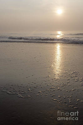 Photograph - Pastel Skies At Sunrise by Debra Fedchin