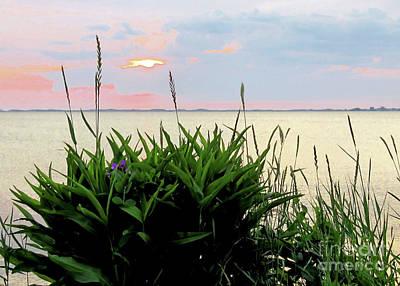 Photograph - Pastel Sky by Janice Drew