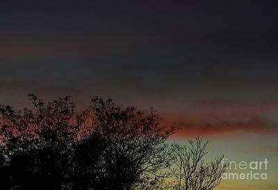 Photograph - Pastel Sunset by Angela J Wright