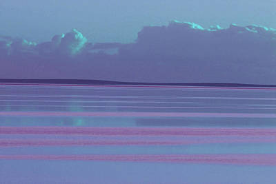 Photograph - Pastel Sunset Sea Lilac by Tony Brown