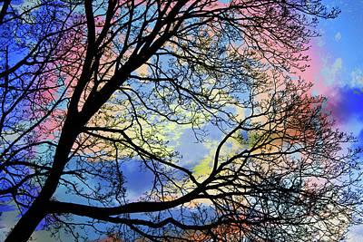 Digital Art - Pastel Sunset Silhouette by Shawna Rowe