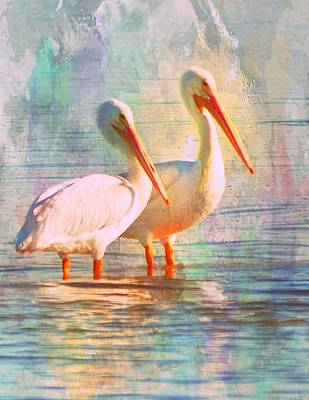 Photograph - Pastel White Pelicans 1 by Sheri McLeroy