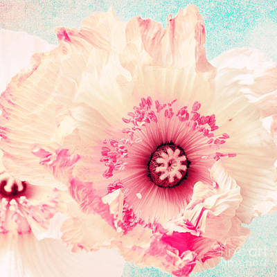 Pale Mixed Media - Pastell Poppy by Angela Doelling AD DESIGN Photo and PhotoArt