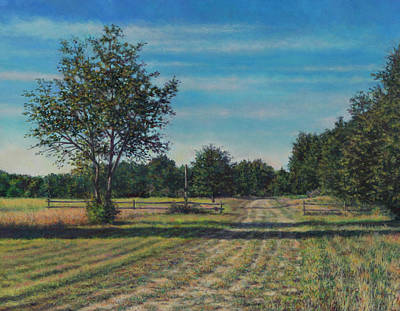 Painting - Pastoral Off Poplar Hill Road by David P Zippi