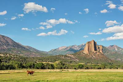Photograph - Pastoral View by Denise Bush
