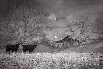 Pasture Field And Barns Art Print by Thomas R Fletcher